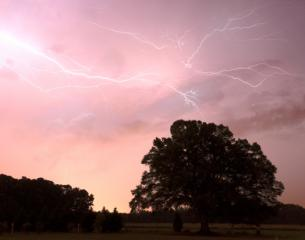 Lighting strikes over Granny Mae's oak tree. Photo was taken near the Wayne/Johnston County Line on Oakland Church Rd Facing SSE around 8:35pm.