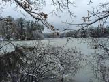 Lake Lynnc