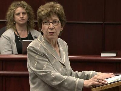 Attorney Diane Savage presents part of the defense's closing arguments in the sentencing phase of Jason Williford's first-degree murder trial on June 6, 2012.