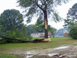 This photo of storm damage was captured Sunday by Michael Rowland in Halifax County.