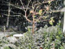 Snow falls in Granville County