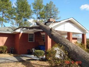 Strong winds caused a tree to fall on a house on  W. Parkton Tobermory Road in Parkton on Feb. 10, 2010. (Photo from Maureen Harrison)