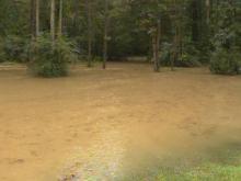 Heavy, steady rains cause flooding