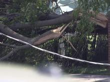 Tornado damage cancels Shaw's spring semester
