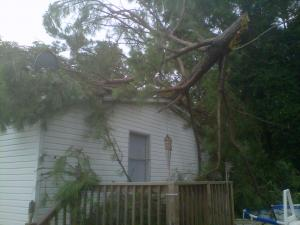 A tree fell on a house in Johnston County during a severe thunderstorm in the area Saturday.