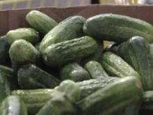 Edgecombe Irene victims get fresh produce