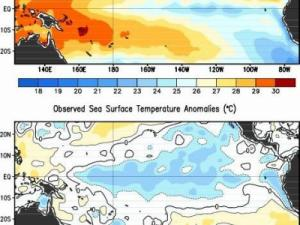 Pacific Ocean average surface temperature (top) and departure from normal (bottom) for the period center on February 1, 2012, showing cooler than normal conditions over the central and eastern equatorial Pacific. Image from the National Weather Service's Climate Prediction Center.