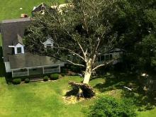Sky 5: Storm damage in Edgecombe and Nash counties