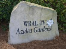 Situated conveniently behind the WRAL-TV 5 television studios in Raleigh, the Azalea Gardens anxiously await blooming season. With an array of spring blooming plants, the garden will flourish in the beautiful summer weather.