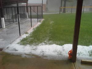 Hail coated this Wake County back yard Tuesday afternoon.