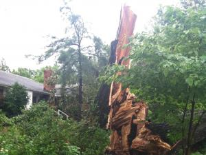 A tree crashed down near a house on a Highway 210 near Angier on Thursday, June 27, 2013.