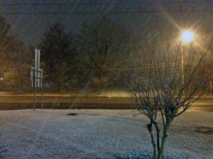 Snow falling in Roxboro during the early morning hours on Thursday, Jan. 16, 2014.