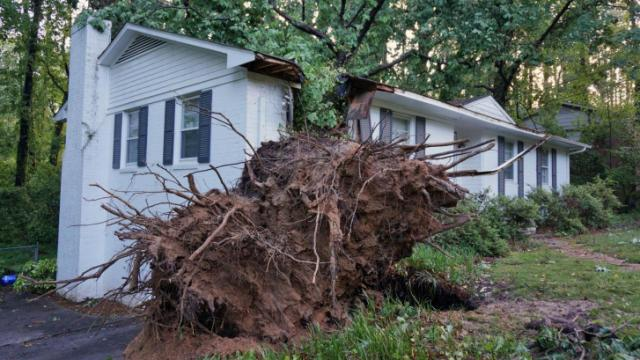 A tree fell onto a home on Alpine Drive in Durham on Thursday, May 15, 2014.