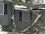 Snow causes tree to fall on Durham apartment