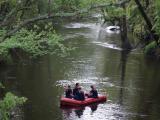 Man slides car into river