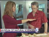New exhibit coming to NC science museum