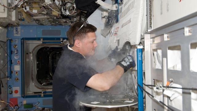 NASA astronaut Doug Wheelock works with the Minus Eighty Laboratory Freezer aboard the International Space Station.(Credit: NASA/JSC)