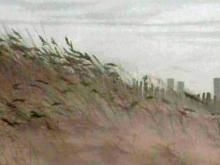 Focal Point: Line in the Sand