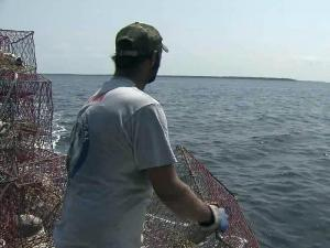Chris Cuthrell said Irene cost him nearly two weeks of work, fuel and time picking up crab pots before the storm and now having to set them out again in the Pungo River.