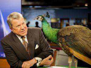 With the return of NBC to WRAL-TV, the station has a new mascot.