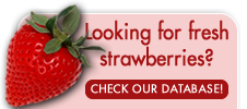 2013_04_GAM_Strawberry_Database