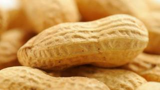 Nut allergies? New study debunks old advice