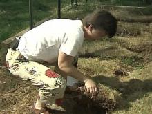 5 on Your Side Settles Woman's Sod Situation