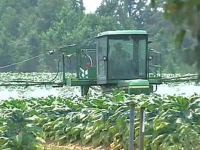 N.C. Tobacco Farmers Profit in Overseas Market