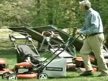 Get the best mower for your green