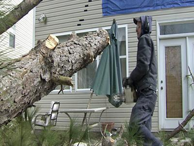 A look at the 70-foot tall tree that fell into Mike Walters' Cary home.