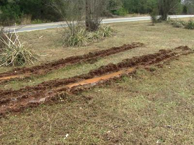 Progress Energy crews made these tire tracks in the yard of Lyanne Spangler's Pittboro home.