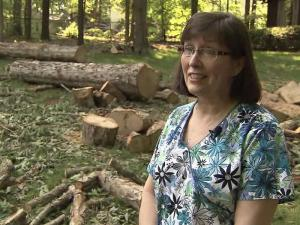 A Wake County couple just wants their money back for tree work that never happened.