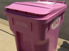 pink trash cans