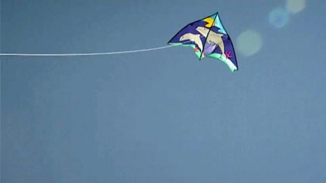 Take flight with kite festival