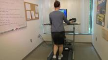IMAGE: Standing desks boost productivity, health