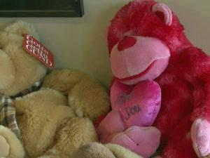 Hundreds of toys were donated to children traumatized by fires and other emergencies.