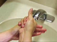 Wash with soap, bleach surfaces to prevent Norovirus spread