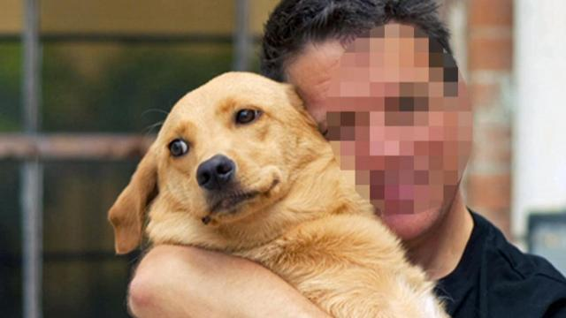 5 On Your Side: Know how to spot a nervous dog