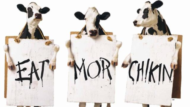 Chick-fil-A cows