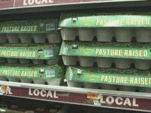 Eggs in short supply as prices rise