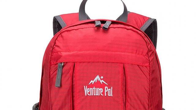Venture Pal Lightweight Hiking Backpack