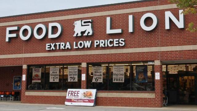 Food Lion Store