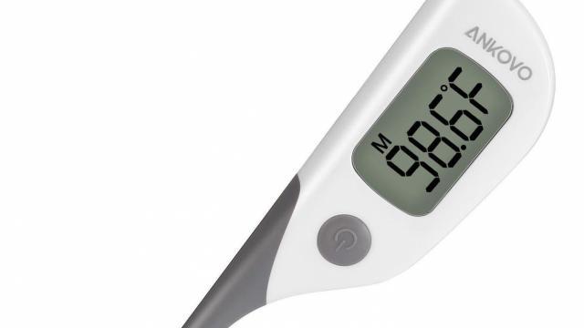 Digital Waterproof Thermometer