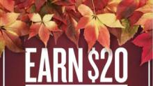 IMAGE: New Food Lion Promo: Shop 6 times and get $20