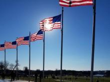 American Flags in Washington, D.C. 2017