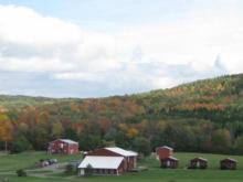 Farm (photo courtesy meatsuite.com)