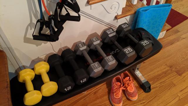 Faye's exercise equipment