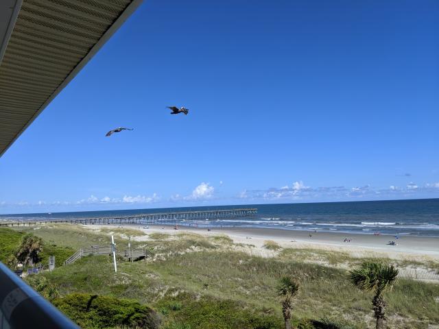 Ocean Isle Beach and pelican view from the porch in the Ocean Isle Inn hotel room, top floor