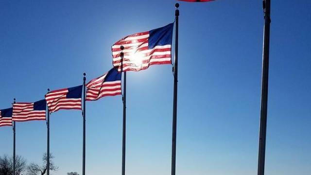 Flags in Washington, D.C. (photo credit: Faye Prosser)