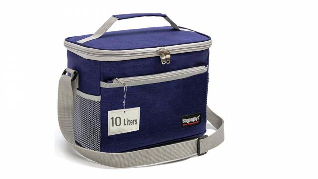 Insulated Thermal Lunch Bag (photo courtesy Amazon)